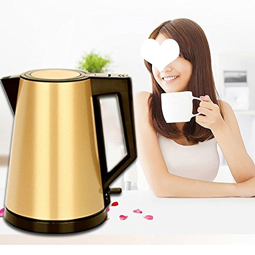 BCQ Stainless Steel Double-Layer Fast Boiling Electric Kettle Automatic Power off Household Kettle Gold(Size:158*220Mm) Electric Kettles