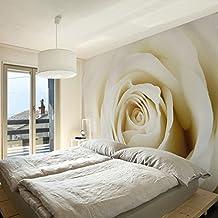 Suchergebnis auf Amazon.de für: fototapete beige rose