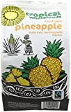 Tropical Wholefoods Sun Dried Pineapple 100 g (Pack of 14)