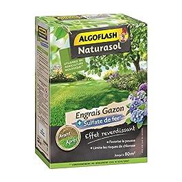 ALGOFLASH NATURASOL Engrais Gazon + Sulfate de Fer