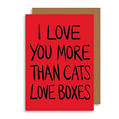 Funny Cat Greeting Card - Funny Anniversary Card - Cute