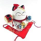 Feng Shui Panda 'Maneki neko portafortuna