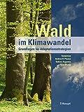 Wald im Klimawandel - Andrea R. Pluess