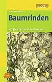 Baumrinden: Vergleichen und bestimmen
