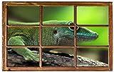 Grüner Gecko Reptil Natur Wandtattoo Wandsticker Wandaufkleber H0154 Größe 40 cm x 60 cm