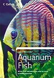 Collins Need to Know? – Aquarium Fish