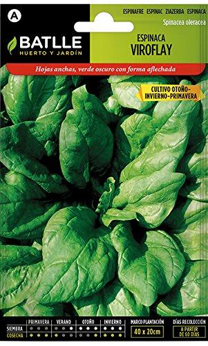 Semillas Batlle - Semi di spinacio