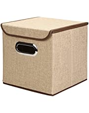 Inditradition European Pattern Foldable Storage Box with Lid | Ideal for Toys, Books, Shoes & Other Home Sundries | 25 x 25 x 25 cm, Non-Woven Cotton (Brown)