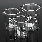 MYAMIA 3Pcs Taza De Vidrio Borosilicato Graduado 100Ml 150Ml 250Ml Conjunto Volumétrico Laboratorio Cristalería