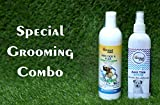 Best Natural Dog Shampoos - ROYALE DOG Shampoo Will Assist in clearing Away Review