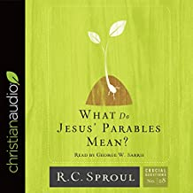 What Do Jesus' Parables Mean?: Crucial Questions Series