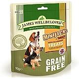 James Wellbeloved Mini Jacks Turkey & Veg Cereal Free 90g x 2