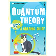Introducing Quantum Theory: A Graphic Guide (Introducing.)