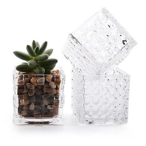 T4u 8cm cristallo fiore bicchiere vaso quadrato cubo decorativo forma collezione pacchetto di 3