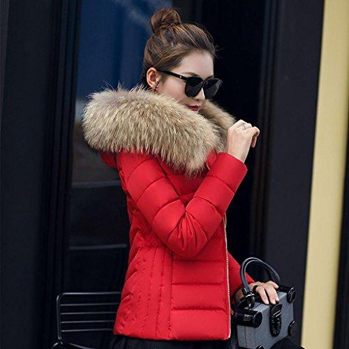 Manteau à Capuche Femme,LMMVP Mode Solide Femmes Occasionnels Plus Epais Manteau d'hiver Slim Down Veste Pardessus rouge