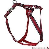 Feltmann Premium Hundegeschirr mit Alu-Max®, Soft- Nylonband, Muster rot, 70-90cm, 25mm