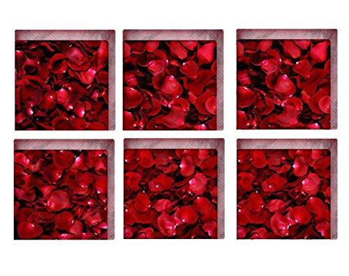 Jiaa Haustiere PVC Badewanne Aufkleber Rutschfeste Batroom Abziehbilder,15cm×15cm,6 Stück (Badewanne Abziehbilder)