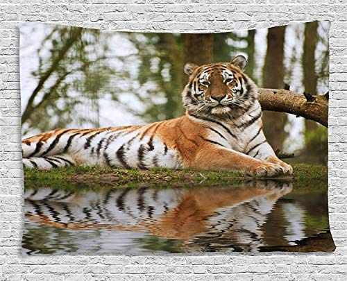 VTXWL Tiger Tapestry, Beast of Siberia Resting on a Warm Day on a Lake with its Reflection Altaica Mammal, Wall Hanging for Bedroom Living Room Dorm, 80 W X 60 L Inches, Light Brown