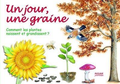 Un jour, une graine : Comment les plantes naissent et grandissent ?