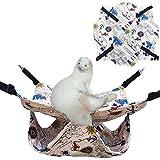 Oncpcare - Hamaca para Mascotas Delgada, Hamaca de Verano con diseño de cobaya, Accesorios para Animales pequeños, Oso Dorado Degu Squirrel