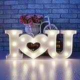 LED Buchstaben Licht Love Night Lights – Romantische LED-Festzelt Zeichen Wand Lichter für Home Decor batteriebetrieben & USB für Wohnzimmer, Schlafzimmer, Party, Weihnachten Hochzeit Geburtstag