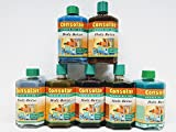 2x 0,25 Liter Consolan Holz-Beize Farbwahl 0,5 Liter, Farbe:Kiefer