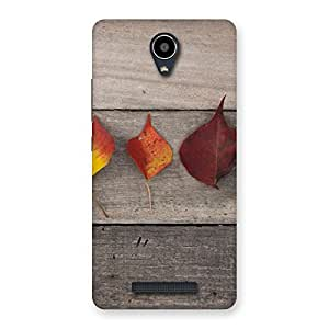 Autumn Leaves Back Case Cover for Redmi Note 2