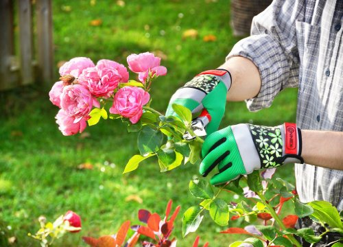 Connex FLOR78077 Gartenhandschuhe Spandex Floral Gr. 7
