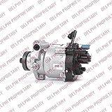 Einspritzpumpe DELPHI (9044A130A)