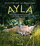 Ayla - meine ungewöhnliche Freundschaft mit einem jungen Fuchs - Silje Elin Matnisdal, Leiv Magnus Grøtte
