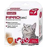 Beaphar - FIPROtec, pipettes anti-puces et anti-tiques au Fipronil - Chat - 4...