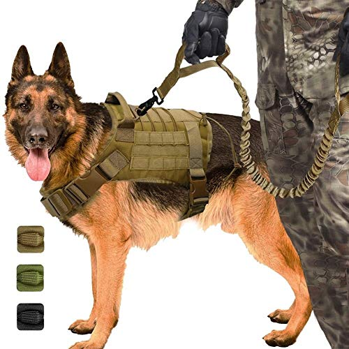 Taktische Hundegeschirr Working Dog Weste Nylon Bungee Leine führen Training für mittelgroße Hunde Deutscher Schäferhund ()