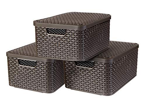 CURVER Style Aufbewahrungsbox-Set, Kunststoff, Dunkelbraun, 3x18L