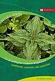 Die 12 wichtigsten essbaren Wildpflanzen: Bestimmen, sammeln und zubereiten (Natur & Genuss)