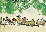Puzzle per adulti in legno da 1000 pezzi - Molte carte per uccelli - Puzzle per Bambini Adulti Gioco Creativo Regalo Decorazione 75x50CM