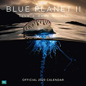 BBC Blue Planet 2020 Calendar - Official Square Wall Format Calendar