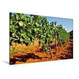 CALVENDO Natur: Premium Textil-Leinwand 120 cm x 80 cm quer, Rote Erde und Weinreben | Wandbild, Bild auf Keilrahmen, Fertigbild auf echter Leinwand, Leinwanddruck