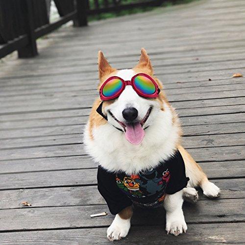 Zoom IMG-2 fretod occhiali per cani da
