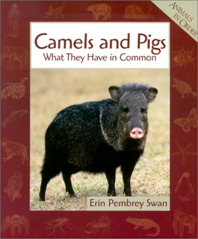 Camels and Pigs: What They Have in Common (Animals in Order (Pb)) -