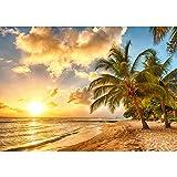 Fototapete 300x210 cm - ALLE TOPSELLER auf einen Blick ! Vlies PREMIUM PLUS - DREAM BEACH - Strand Meer Sonnenaufgang Beach Wasser Blau Himmel Sonne Sommer - no. 042