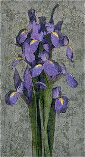 Keilrahmen-Bild - John Seba: Purple Iris 50 x 100 cm Leinwandbild (Iris-bild Purple)