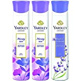 Yardley London - 2 Morning Dew And 1 English Lavender Deo For Women 150ml (Pack Of 3)
