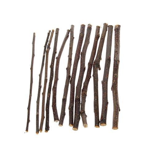 CADANIA Haustier-Molar-Spielzeug-natürlicher Apfelbaum-Zweig für die Hamster-Zahn-hölzernen kauenden Spielwaren