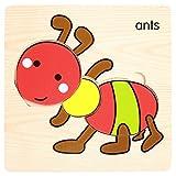 MMLC Schichtenpuzzle Kinderpuzzle mit Grundplatte Puzzleteilen, Teile und Platte aus Holz, Puzzlespiel für Kinder ab 18+ Monaten, Legespiel für Kleinkinder (Q)