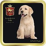 Stewarts Luxus schottischen Fudge - Labrador - 100g