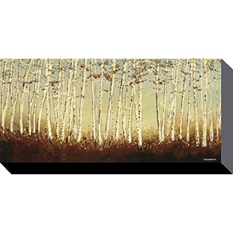 Alberi - Betulle En Luce Argento, Serena Sussex Stampa Su Tela (100 x 50cm)