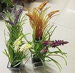 Processo: semi-manuale semi-meccanica  Tipo: BONSAI  Colore: Tulip, la lettera, erba, e narciso