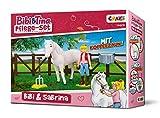 Craze 14608 - Spielfiguren Set - Bibi und Tina, Pflege Set mit Bibi und Sabrina