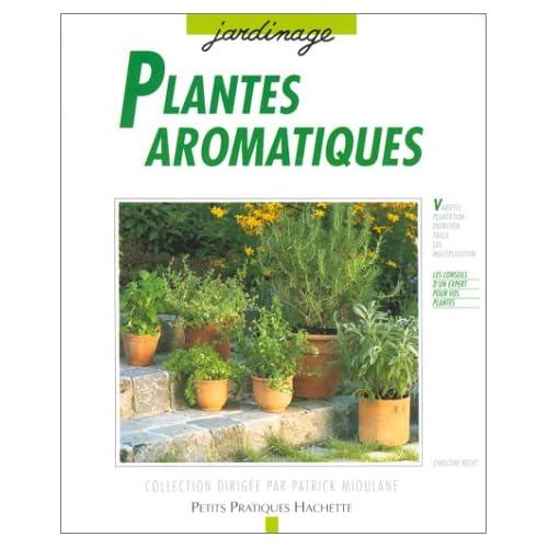 Plantes aromatiques : Culture à la fenêtre, sur le balcon, en terrasse, les conseils d'une spécialiste pour les cultiver, les soigner, les multiplier et les cuisiner