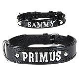animal-gear Buchstabenhalsband Leder Hundehalsband schwarz